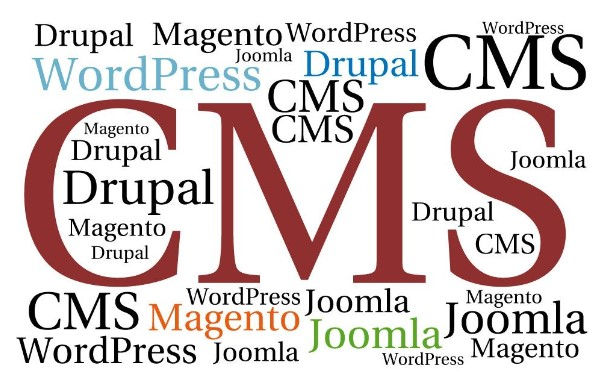 Everything you need to know about CMS